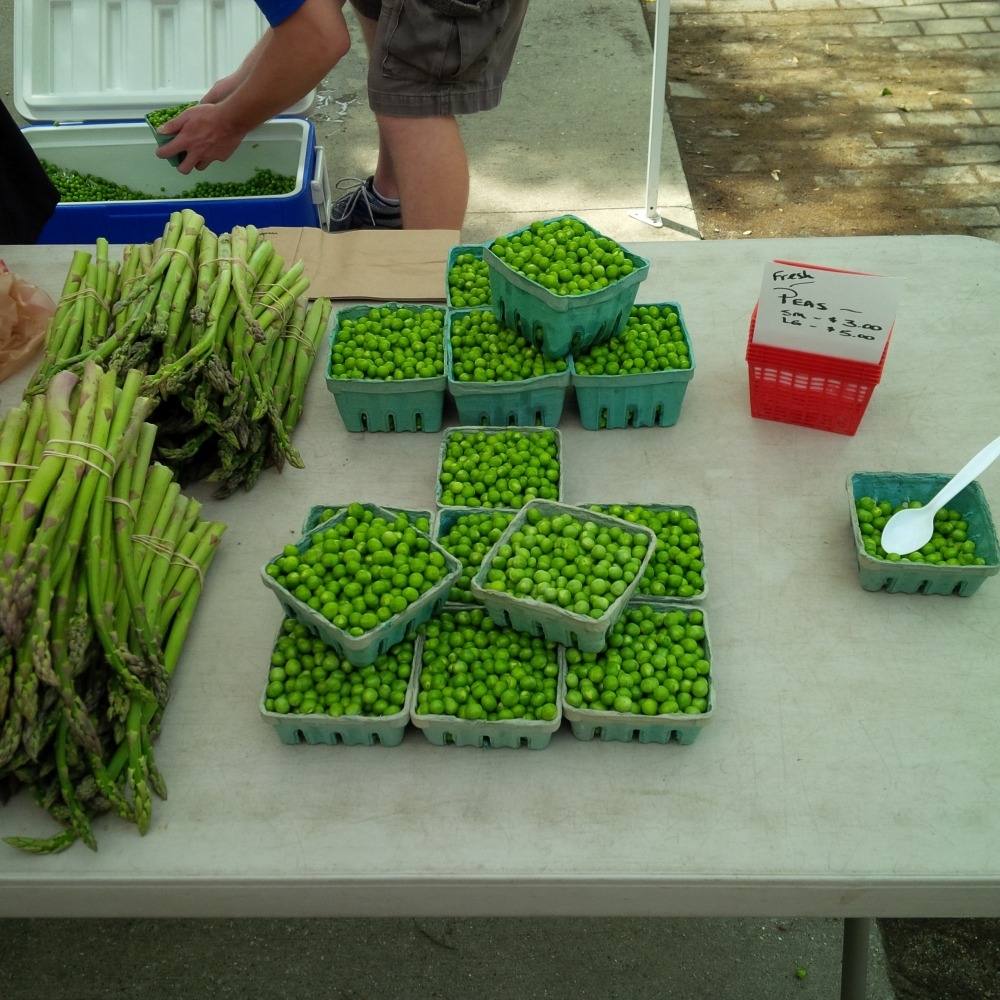 Check out the cooler full of peas in the back.