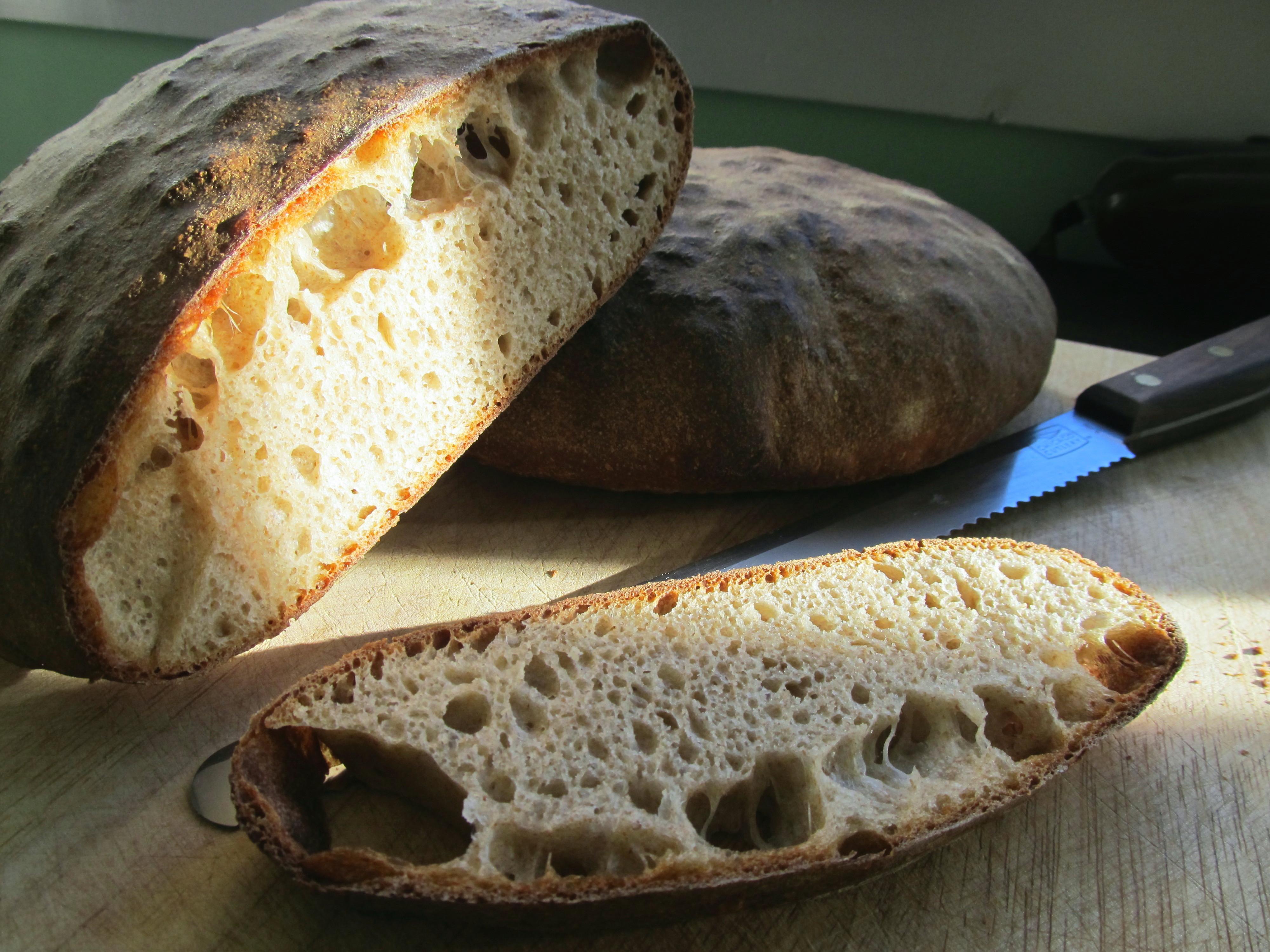 Pan Bigio Rustic Italian Wheat Bread The Roaming Gastrognome