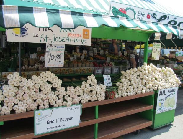 Look at all that fresh garlic!