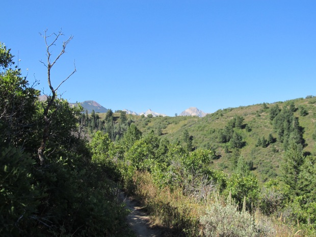 The trail now moves along the west side of the ridge.