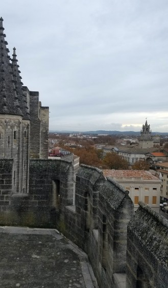 avignon-papes-palace10