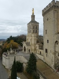 avignon-papes-palace11