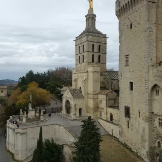 avignon-papes-palace11