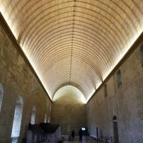 avignon-papes-palace6