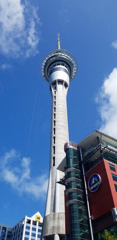 Sky tower. No, we didn't go up. Our cab driver said 'you're from Chicago, you've been up big buildings'